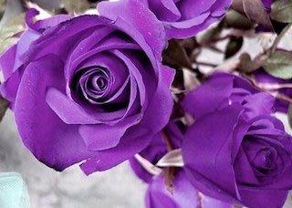 【冠亦商行】特選 紫玫瑰香精【1L下標專區】 另有10ml、30ml、50ml、100ml、500ml 優惠下標專區