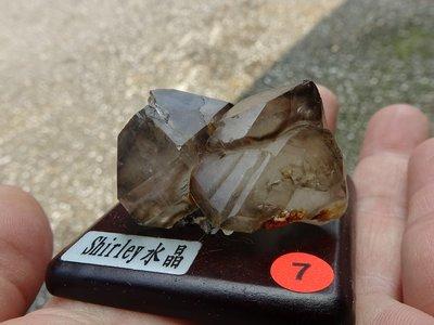 ~shirley~鱷魚骨幹水晶小標本NO:7~完整度高~除穢聚氣~化煞聚財~低價起標!