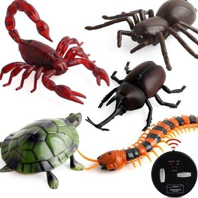 整蠱玩具遙控蜘蛛男孩電動玩具嚇人仿真蟑螂螞蟻昆蟲動物蜈蚣蛇16款可選