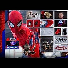 (訂金減100) 28/7 Hottoys Spiderman Homecoming 1/4 蜘蛛俠 Normal Version QS014B 會場版 訂單