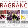 韓國 cocod or 室內擴香瓶 200mL+擴香棒(5支)   多款味道任選~現貨供應中✪棉花糖美妝香水✪