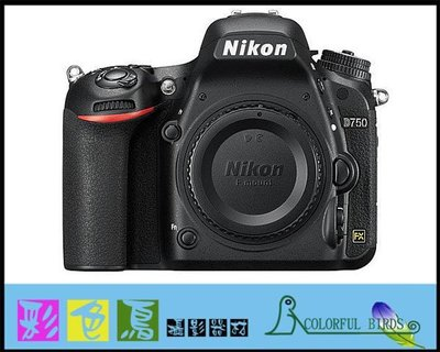 彩色鳥(租鏡頭 租相機 相機出租 鏡頭出租) Nikon D750 Nikon 35mm f1.4 G 出租