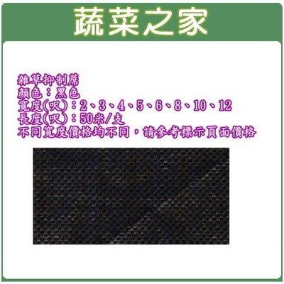 全館滿799免運【蔬菜之家012-C0...