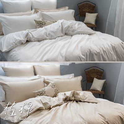 《50支紗》雙人床包/兩用被套/枕套/4件式【共2色】植棉-白、米 100%精梳棉-麗塔寢飾-