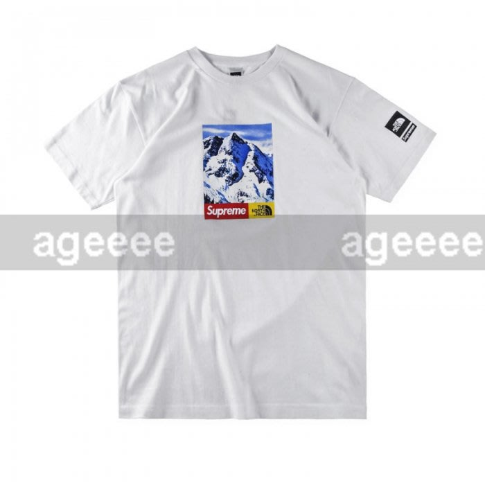 572c9a96ea1d Supreme X The North Face Mountain Tee 雪山BOX 短T | Yahoo奇摩拍賣