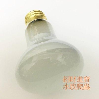 110V 日燈 UVA 黃光聚熱燈泡 太陽燈 適合烏龜 陸龜爬蟲 寵物箱 蜥蜴 刺蝟 鸚鵡鼠 取暖燈保溫燈保暖燈 TYN