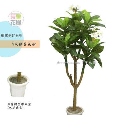 【☆芳馨花園☆】人造樹~5尺雞蛋花樹盆栽【G11247】-南洋自然風格,景觀造景 園藝布置