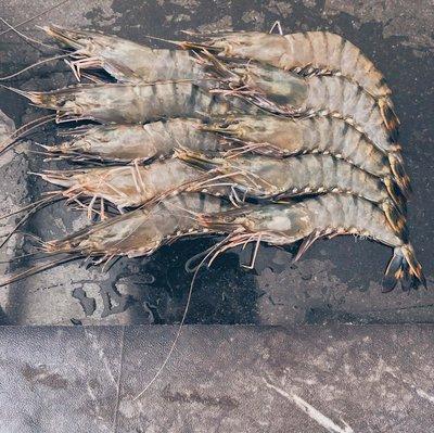 鮮鱻本舖  深海大草蝦10尾裝