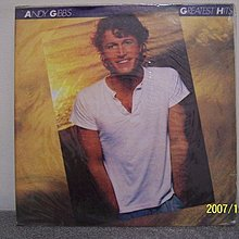 102-1.Andy Gibb:精選集,Flowing rivers,2LPs