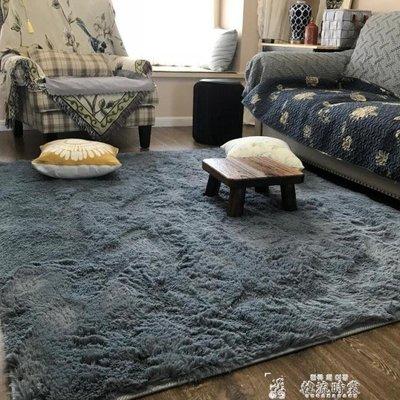 可水洗絲毛地毯客廳沙發臥室床邊可愛家用滿鋪地墊榻榻米