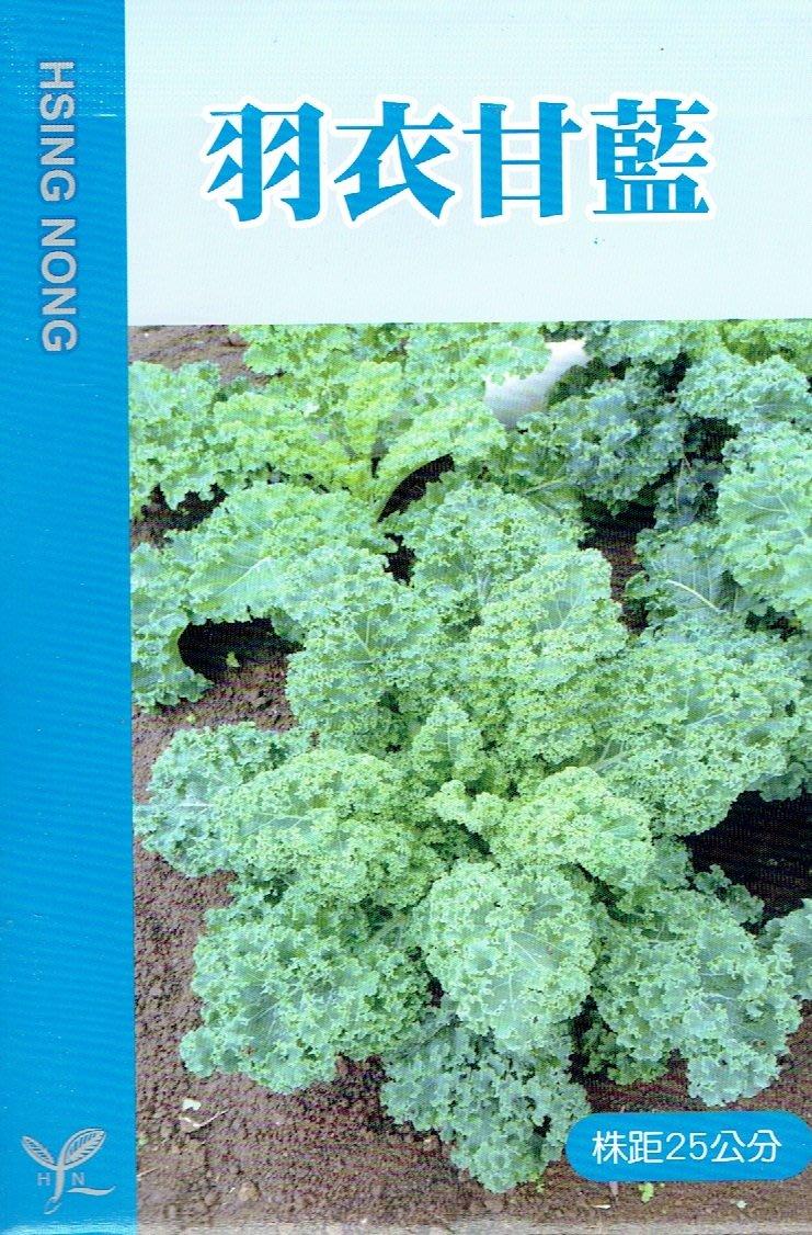羽衣甘藍(無頭甘藍) 【蔬果類種子】興農牌中包裝 每包約1公克
