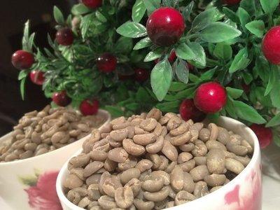 喜朵飲品專業批發~Ethiopian YirgacheffeG1 耶加雪菲咖啡生豆(水洗)G1