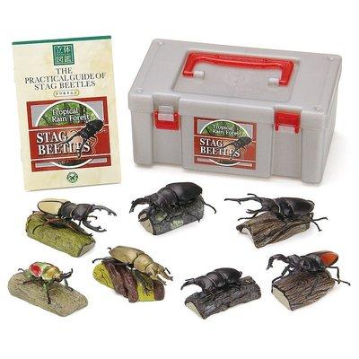 日本正版 立體圖鑑擬真模型BOX 鍬形蟲 7種組 小模型 小公仔 日本代購
