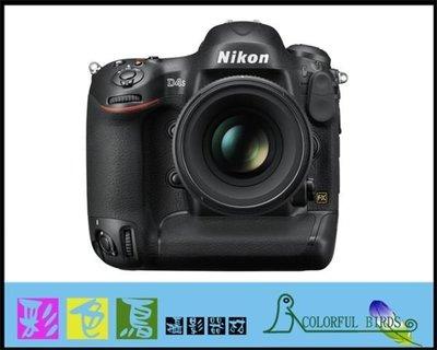 彩色鳥(相機出租 租相機 鏡頭出租 租鏡頭) 租 Nikon D4S + Nikon AF-S 50mm F1.4 G NIKON 50MM 出租 D4