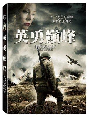 (全新未拆封)英勇巔峰 Thousand Yard Stare DVD(得利公司貨)