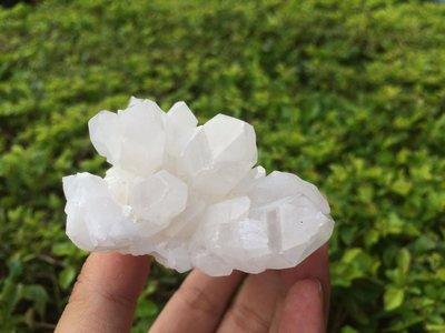 【小川堂】淨化 巴西 原礦(20) 正能量 純天然 清料 白水晶簇 鱷魚 骨幹 水晶 121.9g 附木座