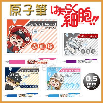日本製 Zebra 工作細胞 原子筆 圓珠筆 黑筆 紅血球 血小板 白血球 殺手T細胞 SARASA 👉 全日控