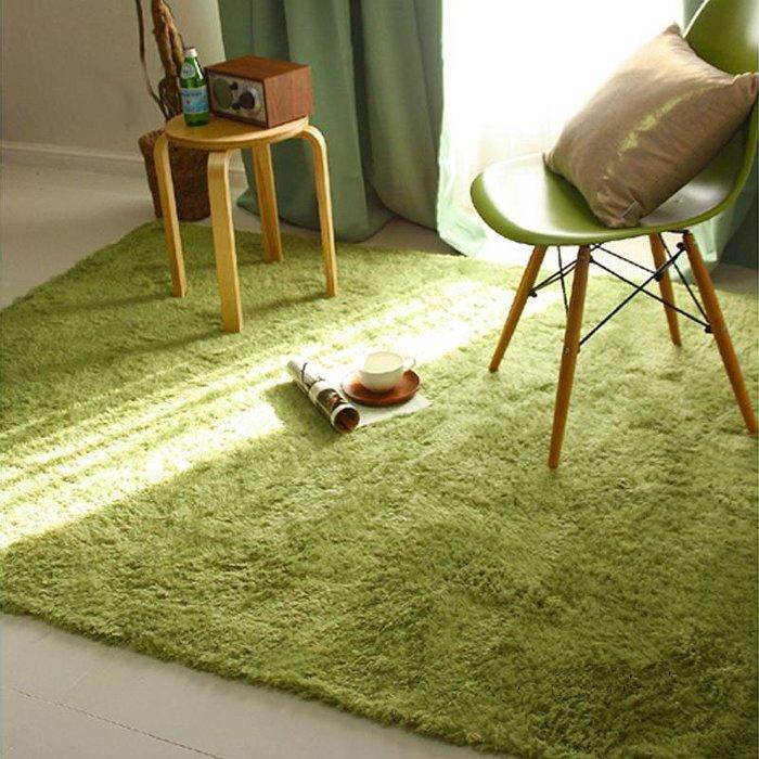 ☆GO 划算 ☆ 160*230cm 絲毛地毯 防滑地毯 多色可選 可定製尺寸