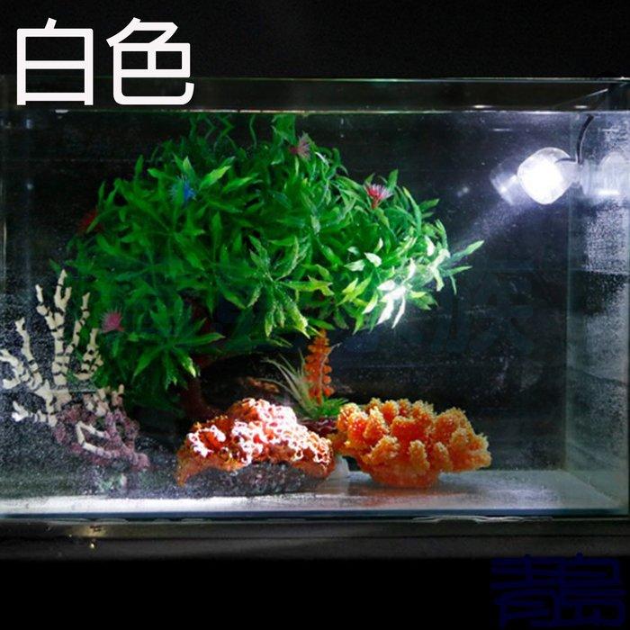 暫停Y。。青島水族。。KS-B07-W水中情境燈 LED 水中燈 水中投射燈(小夜燈 水陸兩用 1W USB)==白色