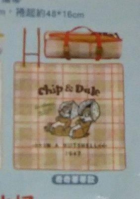 7-11 迪士尼 夢幻露營 防潑水野餐墊單賣奇奇蒂蒂款