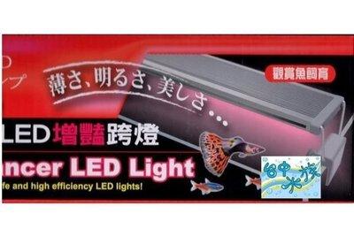 {台中水族} 觀賞魚專用--增豔 超亮LED 跨燈-1尺 特價 淡海水兩用