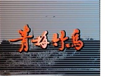 1994 中視 青梅竹馬DVD 林立洋 方文琳 翁家明 田麗 姜厚任 李烈 潘儀君主演15DVD