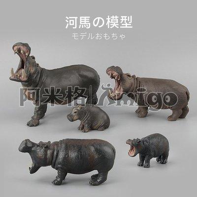 阿米格Amigo│一套5款 河馬 hippo 仿真動物模型 科教 教學 公仔 擺設 玩具 兒童 幼兒 禮物