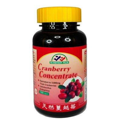 營養補力 蔓越莓 乳酸菌 膠囊 100粒裝 Cranberry + Lactobacillus  美國進口