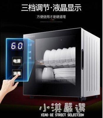 哆啦本鋪 消毒櫃家用小型立式高溫消毒碗櫃臺式迷你碗筷茶杯 D655