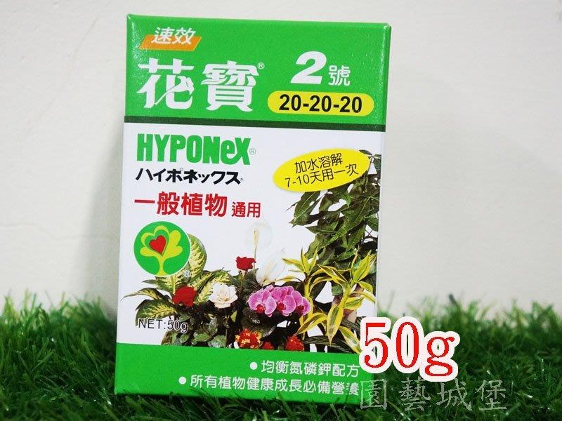 【園藝城堡】花寶2號(50g) 一般植物通用  植物通用速效肥 植物花卉用肥