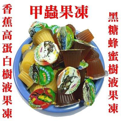 獨角仙/鍬形蟲/各種昆蟲/日本甲蟲果凍(香蕉高蛋白樹液) 16g/顆