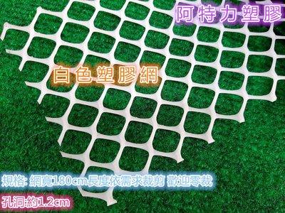 白色塑膠網 白色鐵窗網 鐵窗網 白色安全網 尼龍網 圍籬網 萬能網 籬笆網 隔離網 防止物品掉落