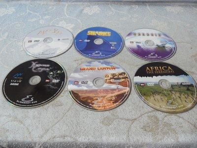 紫色小館28-1------WINNEY SLINGSHOT DVD