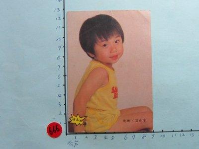 小彬彬, 溫兆宇,老明星卡-