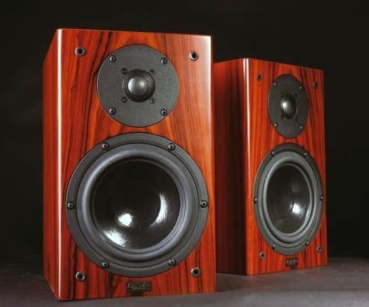 電洽【音逸音響】發燒小喇叭 揚聲器》美國 Aerial Acoustics Model 5B (玫瑰木Rosewood)