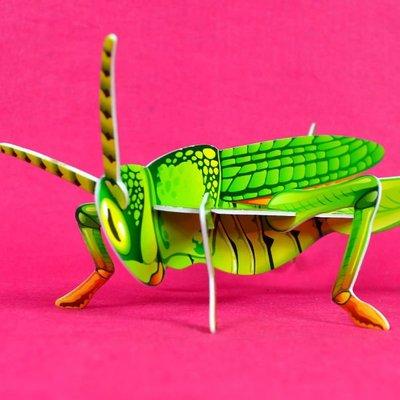 佳廷家庭 親子DIY紙模型3D立體拼圖贈品獎勵品專賣店 昆蟲動物世界 袋裝昆蟲1蚱蜢 卡樂保