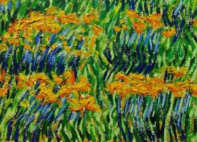 (特價商品)  【台灣人珍瓊-200802】Tulips blooming in the field