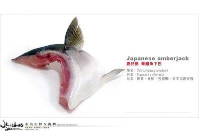 【水汕海物】日本鹿兒島 青甘、青魽、鰤魚、青干魚下巴(二入)。『實體店面、品質保證』