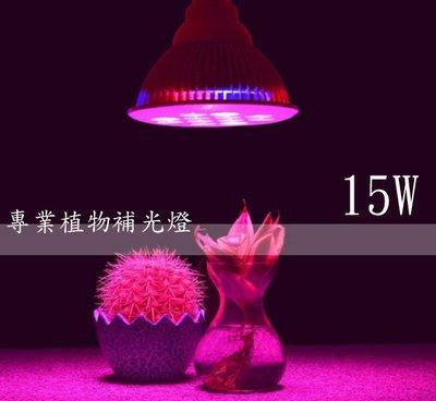 LED 15W 植物燈 高功率par燈 水草燈 多肉 莖葉蔬菜 開花植物 室內栽培 水耕 園藝 E27頭