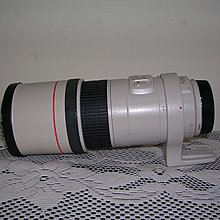 Canon EF 300mm 1:4 L IS 鏡頭
