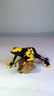 A-222 櫃 現況品 : FURUTA CHOCO EGG 第7彈 有趣動物 箭毒蛙 富貴玩具店
