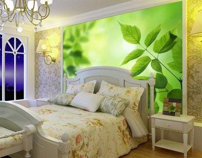 客製化壁貼 店面保障 編號F-556 清心綠葉 壁紙 牆貼 牆紙 壁畫 星瑞 shing ruei