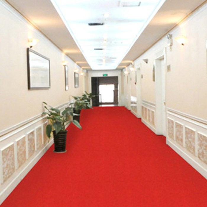 @生活家居城 簡約防滑墊PVC塑料紅地毯衛生間廁所門墊S大面積浴室防水廚房防滑地墊