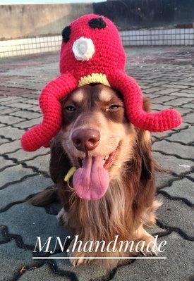 寵物帽 手作寵物帽 寵物毛線帽  客製化寵物商品 手作寵物商品