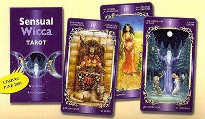 【牌的世界】感官巫師塔羅牌Sensual Wicca (中英文說明)