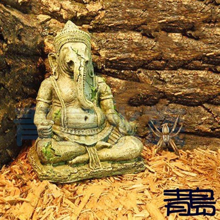 Y。。。青島水族。。。N-039台灣Oracle甲骨文-世界奇景 佛像 爬蟲 仿真 造景 守宮 蜘蛛 魚缸=象神坐像
