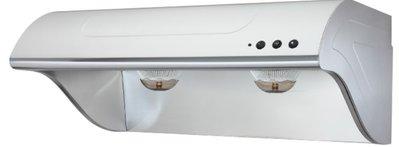 宗霖 櫻花牌 R-3260S 斜背式除油煙機(雙效除油) 70公分 不銹鋼排油煙機 (高雄市)