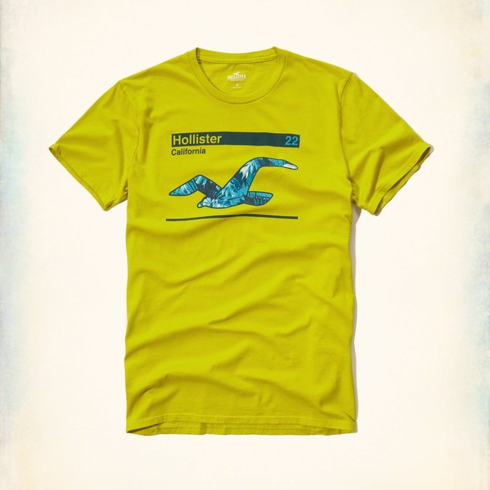 美國百分百【Hollister Co.】T恤 HCO 短袖 T-shirt 海鷗 logo 復古 芥末黃 特價 G922