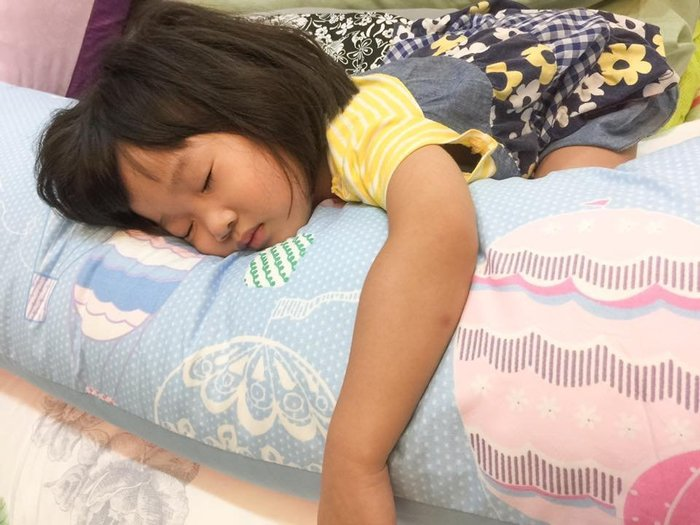 【Little Bed 小床】大長抱枕內枕芯1個+大長抱枕套2個(不挑款 , 隨機出貨)