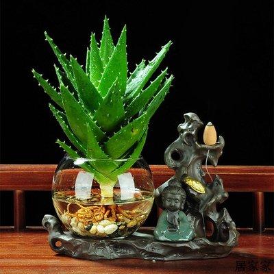 花盆 花器 陶瓷擺飾 陶瓷水養玻璃專用花盆綠植物水培盆栽家居綠蘿銅錢草個性創意蘆薈